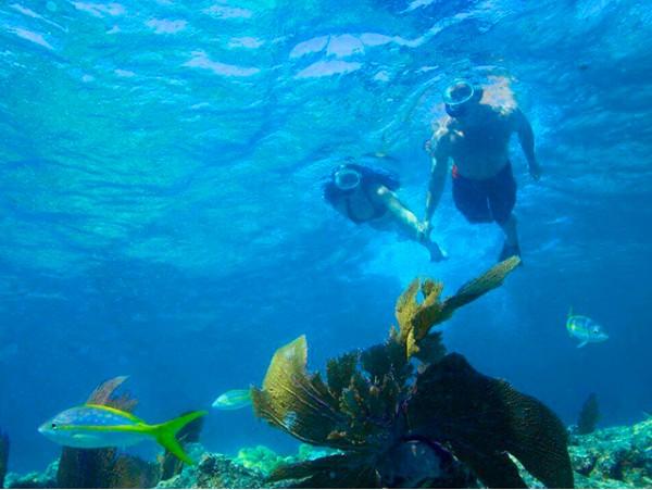 Tour guiado de snorkel para 2 o más personas
