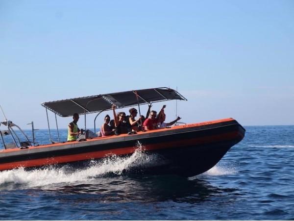 Travesía de 3h en charter privado + bebidas + snorkel + torpedo acuático + acceso a cuevas