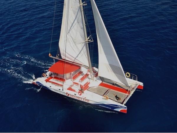 Excursión en moderno catamarán con bebidas + catering + avistamiento y escucha de ballenas y delfines