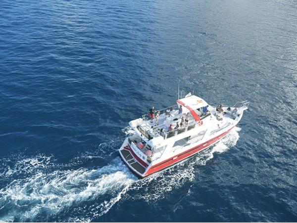 ¡Disfruta de un día inolvidable en alta mar en un Barco Ecológico!