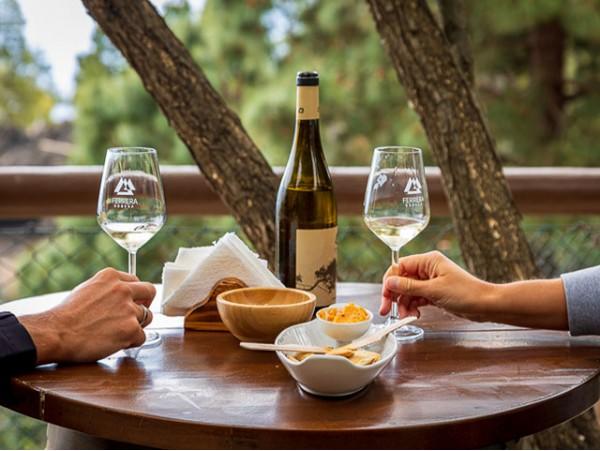 Menú para 2 con cata de vinos + visita a la bodega