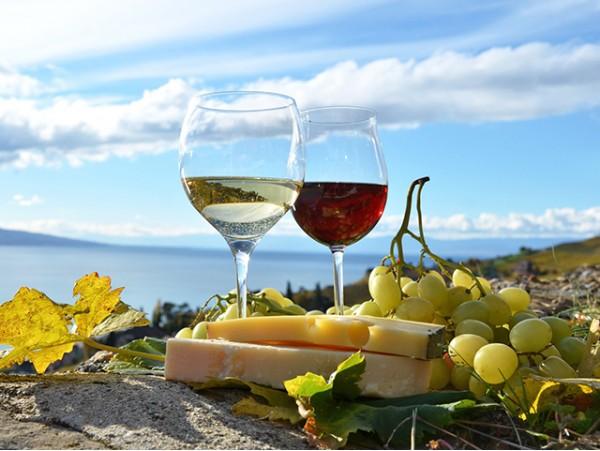 Cata de vino + picoteo + visita guiada por la bodega